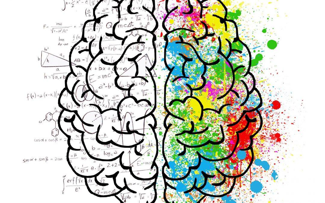 Brain Awareness Night